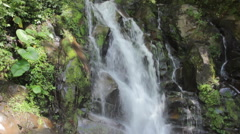 Tilt Up of Waterfall in Jungle Stock Footage