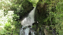 Tilt Down of Waterfall in Jungle Stock Footage