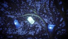 Tree with colorful lanterns Stock Footage