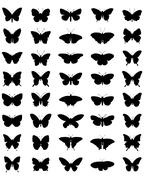 silhouettes of butterflies - stock illustration
