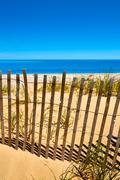 Cape Cod Sandy Neck Beach Massachusetts US Kuvituskuvat