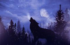 Howling Wolf in Wilderness. - stock illustration