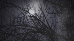 Foggy night Stock Footage