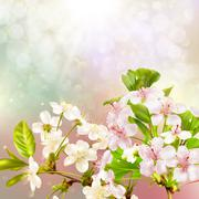 Blooming apple tree against the sky. EPS 10 Stock Illustration