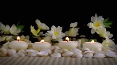Spa Concept with Seashells and Flowers - stock footage
