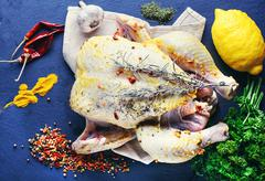 Chicken in spices and seasonings - stock photo