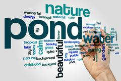 Pond word cloud concept - stock illustration