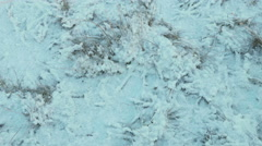 Dried grass under the snow. Clean and frosty daytime. Smooth dolly shot. Stock Footage
