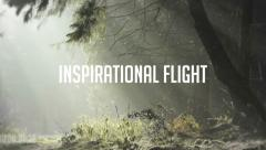 Inspirational Flight - stock after effects