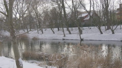 Wild Ducks Mallards Are Floating by a River Rippling Water Snow is on a Ground Stock Footage