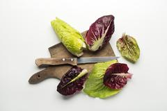 Green and red Salad leaves. - stock photo