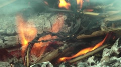 Smoke, dry twigs burning, fire burning. Coals of wood burned 28 Stock Footage