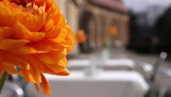 Summer terrace, equipped with tables covered with white tablecloths Stock Footage