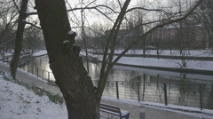 Panorama of Park Railing at Sidewalk Waterfront Slow Motion Along a River Quiet Stock Footage