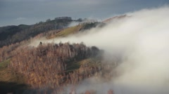 One cold morning autumn mist rises over the forest. It is a white mass that  Stock Footage