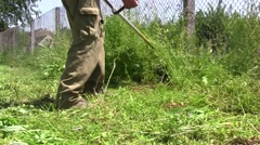 Grass is tall and more, the beginning of spring in the garden 7 Stock Footage