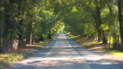 A country road with trees on both sides. Stock Footage