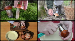Hand pick orange red cap mushrooms and clean with knife. Collage Stock Footage