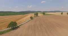 Road between the golden fields Aerial 4K Stock Footage