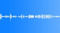 Cockatiel Singing in Cage - sound effect