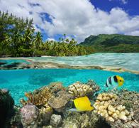 Above and below surface lagoon French Polynesia - stock photo