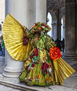 Sophisticate Disguise - Venice Carnival 2014 - stock photo