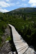 Wooden bridge among dwarf mountain pine on trail nearby Sniezne Kotly in Kark - stock photo