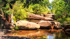 Surrounded by Stones Pond in Forest Reflects Rocks Plants Sky Stock Footage