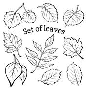 Leaves of Plants Pictogram Set Stock Illustration