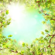 Season branches with fresh green leaves. EPS 10 Stock Illustration