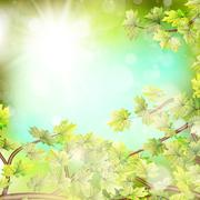 Season branches with fresh green leaves. EPS 10 - stock illustration