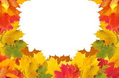 Stock Photo of Autumn leaves frame over white for your text