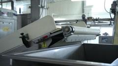 The dough on the conveyor Stock Footage