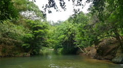 Tropical river in the rainforest. Stock Footage