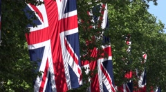 4K Famous England flag wave green tree branch Great Britain symbol national icon Stock Footage