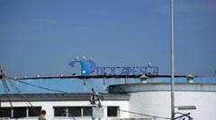 Seagull birds on fishing port sign, Lagos, Algarve, Portugal Stock Footage