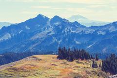 Mt.Adams - stock photo