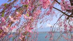 Fujisan view from Kawaguchiko lake, Japan - stock footage