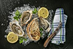 Oysters served on stone plate with ice drift Stock Photos