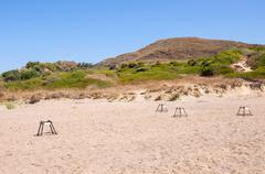 Sea turtle nesting site on Zakynthos - stock photo