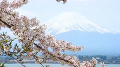 Fujisan view from Kawaguchiko lake, Japan Stock Footage