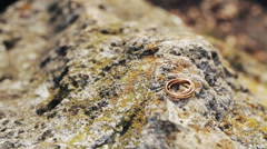 Two wedding rings in infinity sign. Love concept Stock Footage
