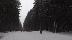 4k Toboggan run Wurmberg Harz mountains winter forest Stock Footage