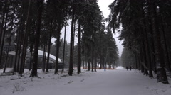 4k Cable car forest station Wurmberg Harz mountains winter Stock Footage
