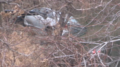 Car accident and crash into Toronto don river Stock Footage