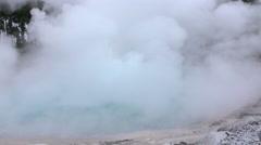 Hot water geyser in geothermal spring steaming - stock footage