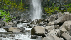 Vegetation and basalt rocks together with falling waters of the Svartifoss Stock Footage