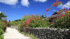 Stone wall and the houses on Taketomi Island, Okinawa Prefecture, Japan Stock Footage