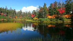 Autumn leaves at Midorinuma Pond at Kogen Onsen in the Daisetsuzan National Park - stock footage
