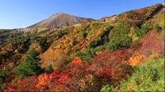 Colorful trees at Mount Azuma-Kofuji and Bandai-Azuma Roadway, Fukushima - stock footage